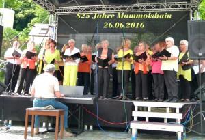 825 Jahre Mammolshain (146a)